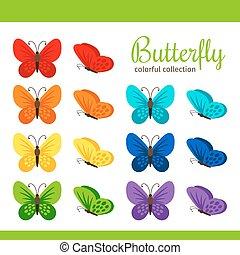 mariposa, colorido, colección