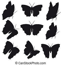 mariposa, Conjunto, blanco, negro, aislado