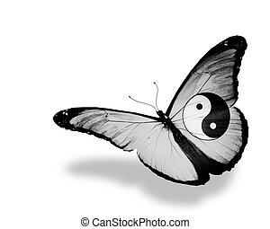 mariposa, dao, vuelo, aislado, bandera, plano de fondo,...