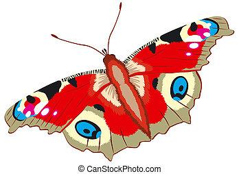 mariposa de pavo real