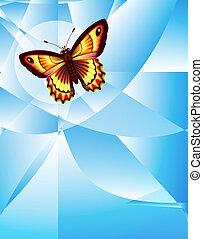 mariposa, en, la red