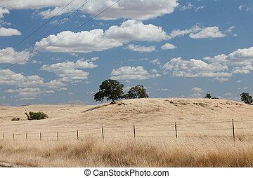 Sierra foothills around Mariposa in Central Valley, California