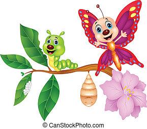 mariposa, metamorfosis, caricatura