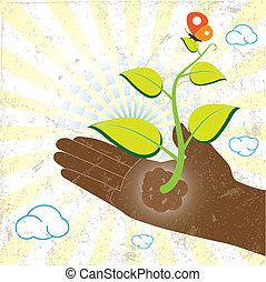 mariposa, planta, rayos, sol, mano, verde