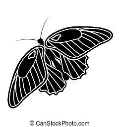 mariposa, silueta