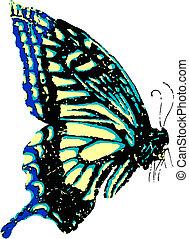 mariposa, vuelo
