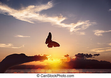 mariposa, vuelo, toma, mano humana