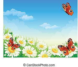 mariposa, y, flores