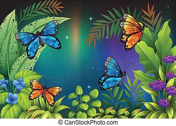 mariposas, en el jardín