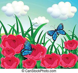 mariposas, en, el, pradera