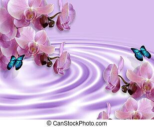 mariposas, plano de fondo, orquídeas