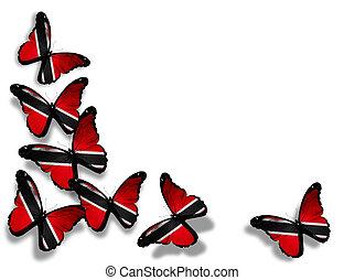 mariposas, tobago, aislado, bandera, plano de fondo, blanco...