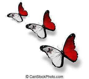 mariposas, tres, aislado, bandera, maltés, blanco