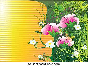 mariposas, vuelo, redondo, colores