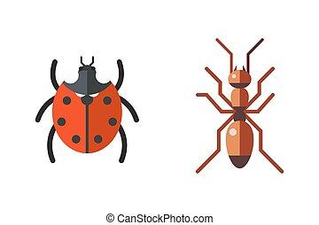 mariquita, conjunto, plano, aislado, hormiga, insecto, plano...