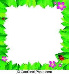mariquita, en, hojas, con, hojas verdes, frame.