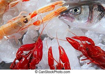 marisco, em, mercado, sobre, gelo