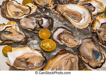 mariscos fresco, platter, ostras, restaurante