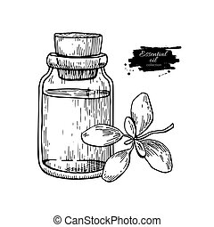 Marjoram essential oil bottle and marjoram leaves hand drawn vector illustration. Isolated plant drawing for Aromatherapy