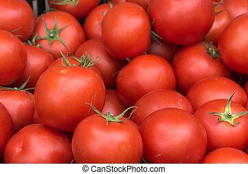 market., 농부, 토마토, 신선한