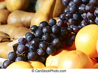 Market Fruits