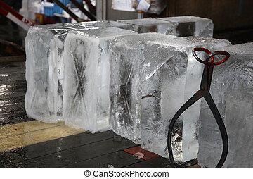 market., olbrzym, kloce, fish, korzystać, lód