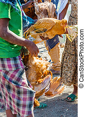 Bahir Dar, Ethiopia - February 11, 2015: People are selling and buying chickens in market place in Bahir Dar. It is a main place for local people to buy food and other goods.