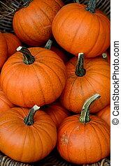 Market Pumpkins