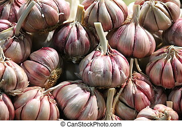 market whole garlic bulbs