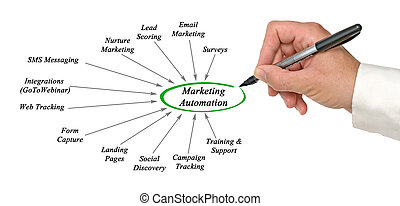 marketing, automation