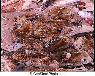 MARKETPLACE fresh cuttlefish