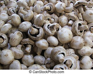 Mushrooms on a market stall fill the image