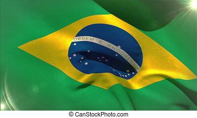 markierungsfahne wellenartig bewegen, brasilien, national, groß