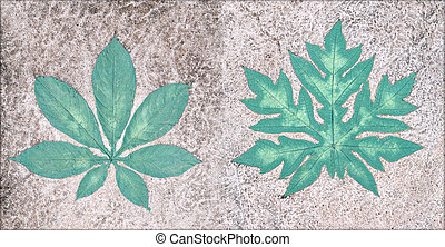 Marks of leaf on the concrete pavement.