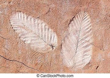 marks of leaf