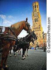 markt, carruajes, grote, brujas, tirado por caballos