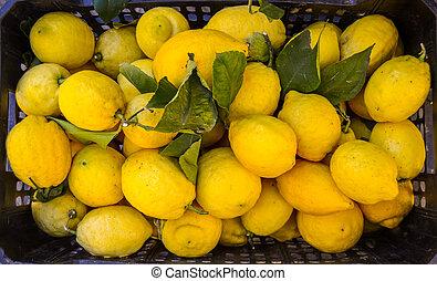 markt, citroenen