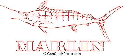 marlin, fish.
