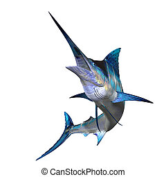 Marlin - Marlins are carnivorous fish with an long body, a...