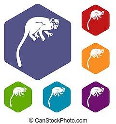 Marmoset monkey icons set hexagon isolated  illustration