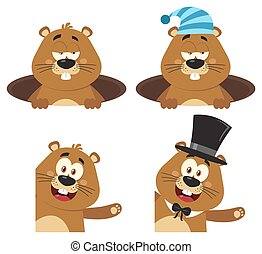 Marmot Cartoon Mascot Character 1. Set Collection