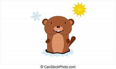 Marmot predicts the weather, art video illustration.