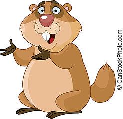 marmotte amérique