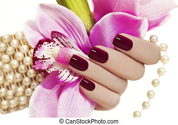 Maroon manicure. - Maroon manicure on female hand with...