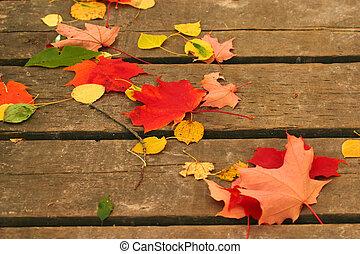 marqué, automne