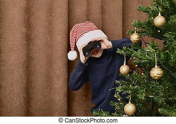 marrón, afuera, cortina, adornado, árbol de navidad, fondo., niño, por, miradas, atrás, el mirar con fijeza, binoculars.