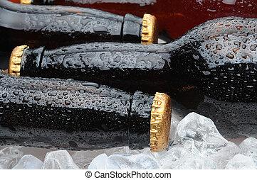 marrón, botellas, colocar, hielo, cerveza, Primer plano