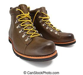 marrón, cuero, shoes, con, amarillo, cordones, aislado, blanco