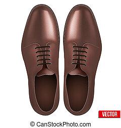 marrón, moda, clásico, shoes., vector., macho