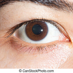 marrón, niña, eye., primer plano